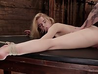 Pallid emotional blond head with juicy ass Alina West is poked from behind
