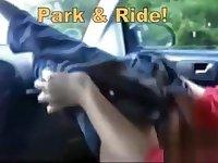 theSandfly Sexbites - Park & Ride!
